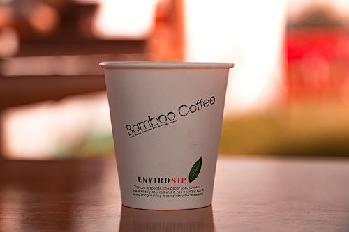 Simon Billing Photographer : Bamboo Coffee uses compostible cups, lids and spoons